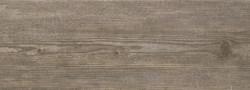 Bayur-Borneo-17_5x50-cm