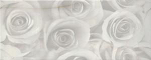 Decor-Dante-Perlato-20x50-cm