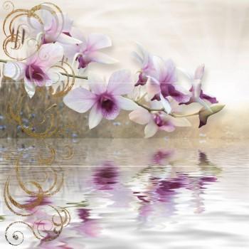 colorgloss_decorado_orquidea-75x75 (2)